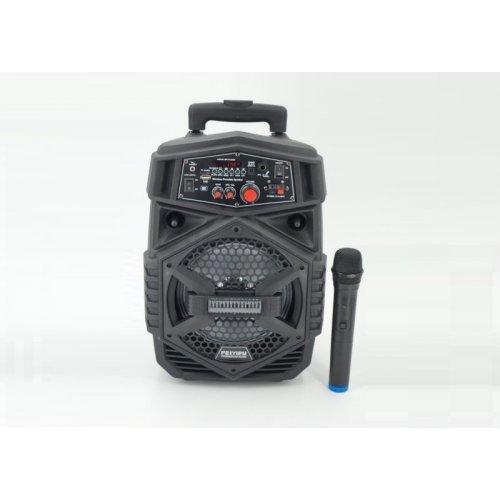 """Компактна акумулаторна караоке колона FEIYIPU ES-4000 8"""" 300W с 1 микрофон"""
